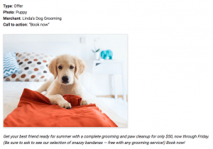 Make Your Pet Business Stand Out on Google with Posts | Barketing Solutions
