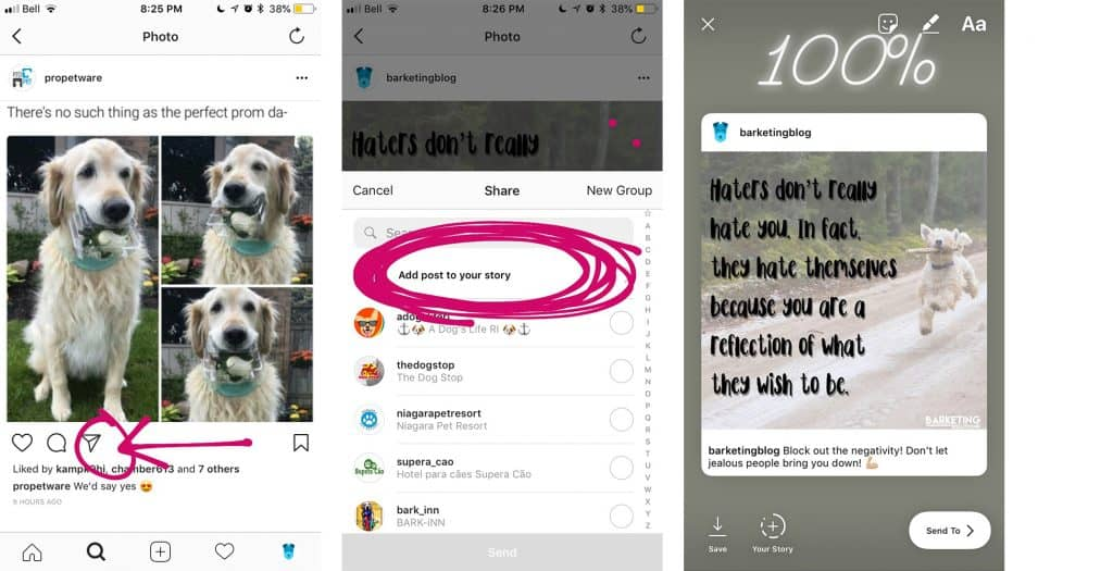 How to Share Your Instagram Posts From the Feed to Stories