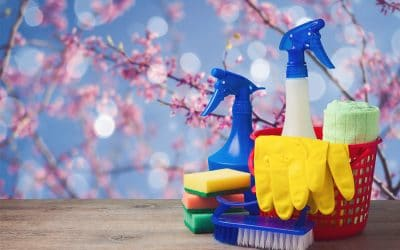 "Your Pet Business Website Spring Cleaning ""To Do"" List"